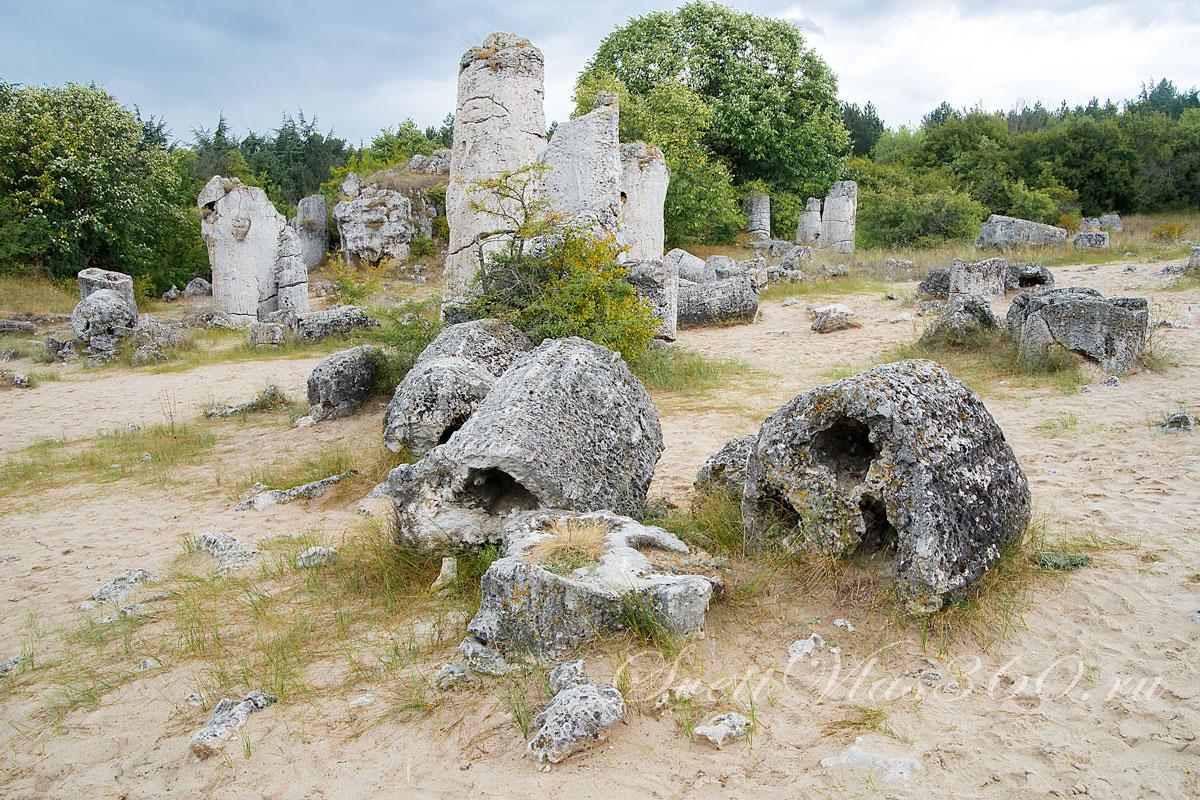 Каменный лес Варна