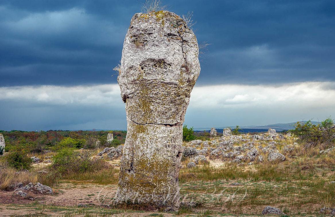 Каменный лес — природный феномен Болгарии