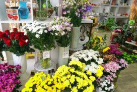 Живые цветы Святой Влас